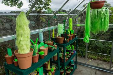 Greenhouse phantasy